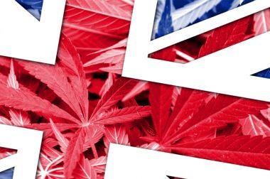Czy nowy premier Wielkiej Brytanii zalegalizuje marihuanę?