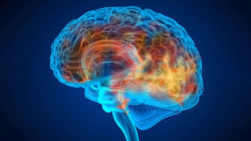 demencja konopie cbd