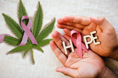 Czy rak piersi odejdzie do historii? [WYNIKI BADAŃ]