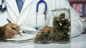 Medyczna Marihuana prawo polskie