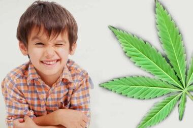 Medyczna Marihuana i Zespół Tourette'a: Historia Kyle'a