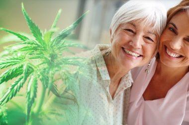 Medyczna marihuana i pacjenci: jak odczuwają jej działanie?