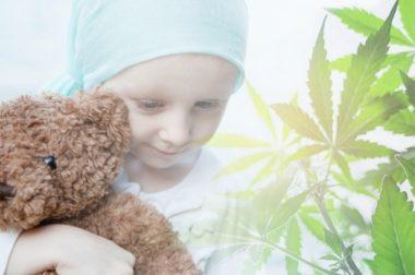 Kanadyjscy naukowcy zbadają jak konopie mogą pomóc dzieciom chorym na raka
