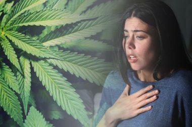 Konopie i choroby układu oddechowego