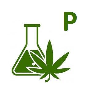 Analiza konopi - Pakiet P Obecność pestycydów - 49 związków
