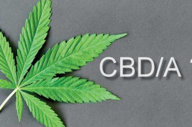 CBD a CBDA. Na czym polegają podobieństwa i różnice?