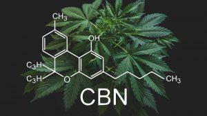 CBN właściwości