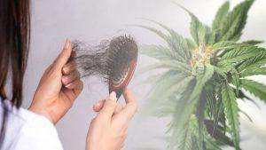 szampon konopny na wypadanie włosów
