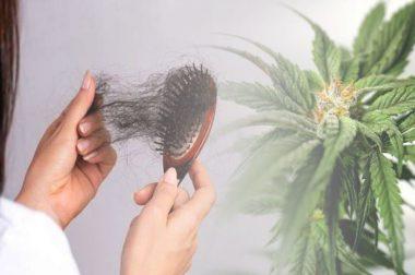 Szampon konopny na wypadanie włosów i problemy ze skórą głowy