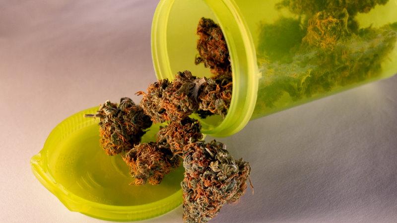 uprawa marihuany sprawa umorzona