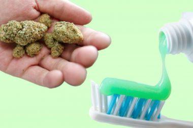 Konopna pasta do zębów na problemy jamy ustnej i do codziennej pielęgnacji