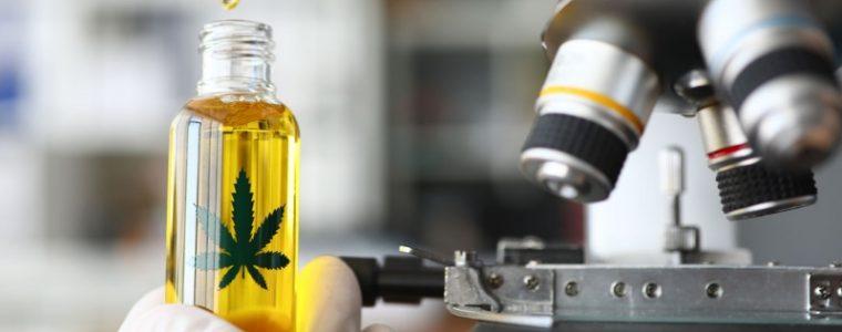 BioHemp CBD na raka olejki i ekstrakty