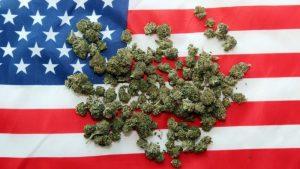 USA zwiększa limit THC