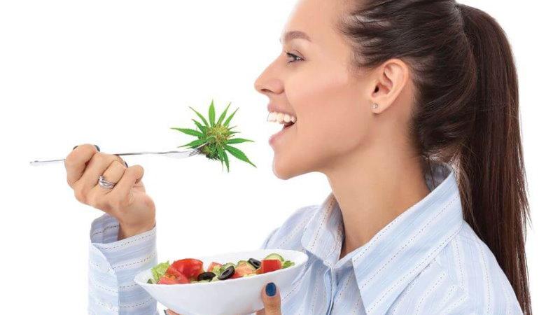 CBD THC apetyt dawkowanie