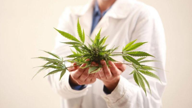dawkowanie THC na ból neuropatyczny