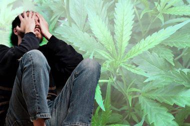 Leczenie schizofrenii medyczną marihuaną