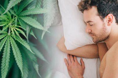 THC i CBD na zdrowy i regenerujący sen