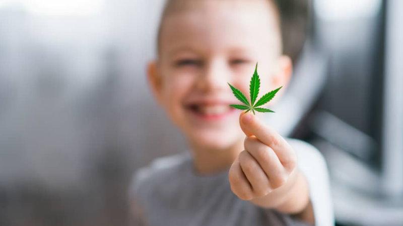 medyczna marihuana spektrum autyzmu