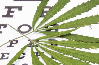 Marihuana w leczeniu jaskry. Przegląd badań i przykłady dawkowania