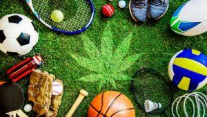 CBD i sport
