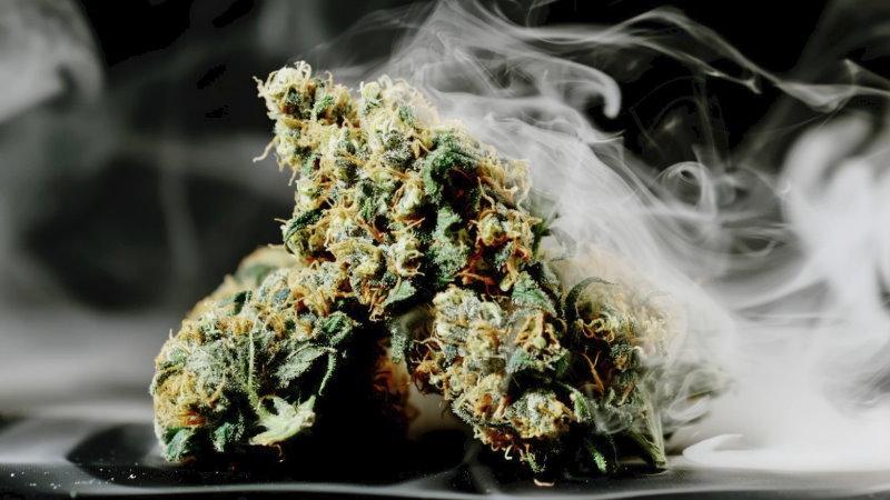 szczepienie COVID-19 marihuana