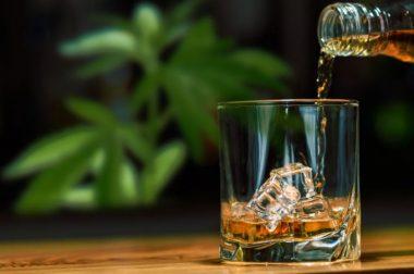 Czy można łączyć CBD i alkohol?