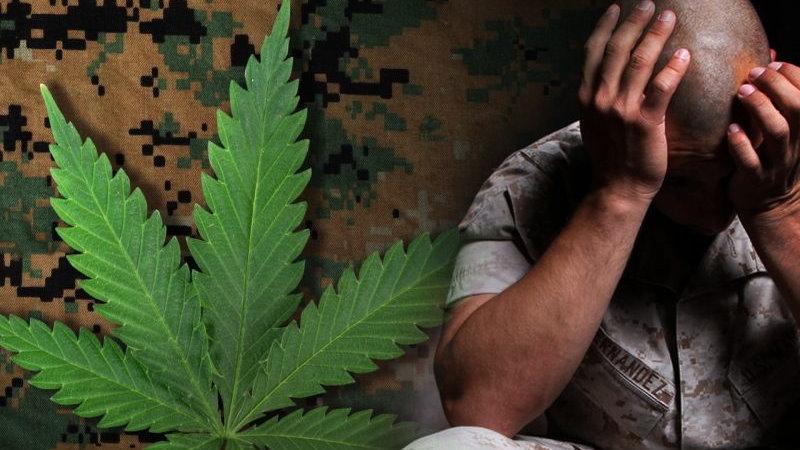 CBD THC PTSD