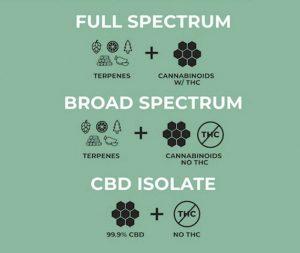CBD spektrum