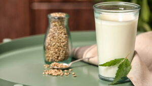 przepis na mleko konopne