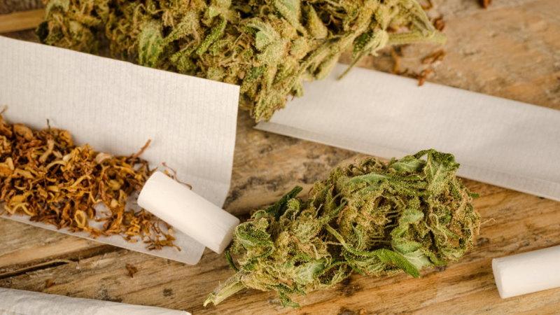 mieszanie różnych odmian marihuany