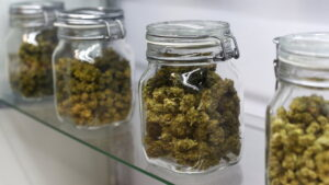 sposób przechowywania marihuany