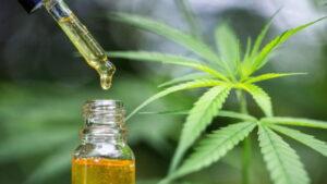marihuana i napady padaczkowe