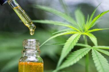 Medyczna marihuana i napady padaczkowe