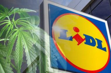 Konfiskata konopnych produktów w sklepach Lidl