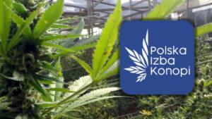 Polska Izba Konopi